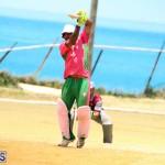 BCB Twenty20 Cricket Bermuda May 21 2017 (5)