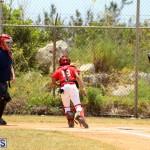 Baseball Bermuda May 10 2017 (11)
