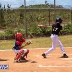 Baseball Bermuda, May 13 2017-1