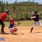 Baseball Bermuda, May 13 2017-14