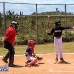 Baseball Bermuda, May 13 2017-2