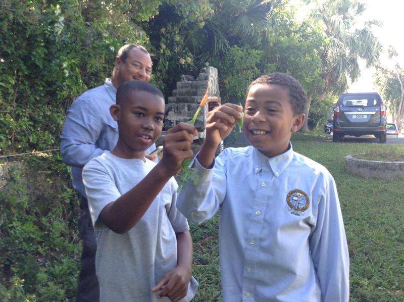 Chatmore Science Fair Bermuda May 31 2017 (6)