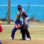 Cricket Bermuda May 16 2017 (1)