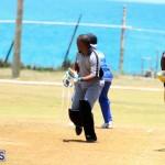 Cricket Bermuda May 16 2017 (11)