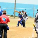Cricket Bermuda May 16 2017 (13)