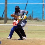 Cricket Bermuda May 16 2017 (2)