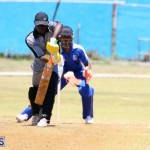 Cricket Bermuda May 16 2017 (3)
