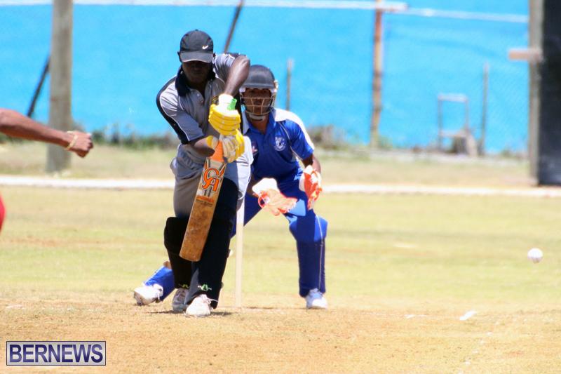 Cricket-Bermuda-May-16-2017-3