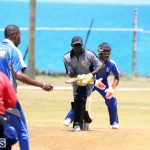 Cricket Bermuda May 16 2017 (4)