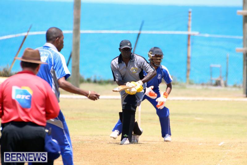 Cricket-Bermuda-May-16-2017-4