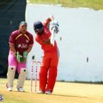 Cricket Twenty20 Bermuda April 30 2017 (8)