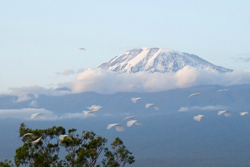 Mt Kilimanjaro Bermuda May 2017