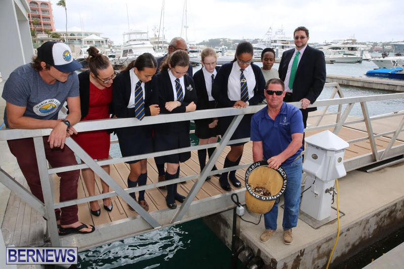 Seabin Bermuda May 12 2017 (8)