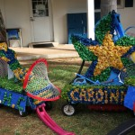 Somersfield Academy Bermuda May 23 2017 (3)