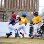 YAO Baseball League Bermuda April 29 2017 (13)