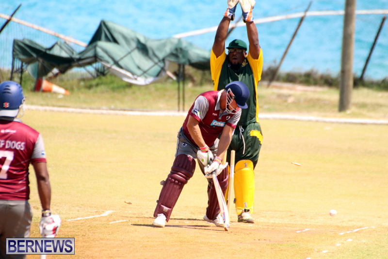 BCB-Twenty20-Cricket-Bermuda-May-28-2017-14