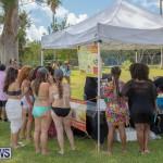 BHW Raft Up Bermuda Heroes Weekend, June 17 2017_170618_3787