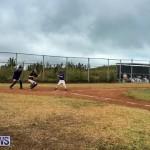 Baseball Bermuda, June 11 2017 (17)