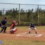 Baseball Bermuda, June 11 2017 (2)