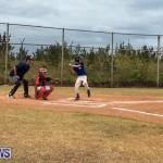 Baseball Bermuda, June 11 2017 (20)