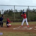 Baseball Bermuda, June 11 2017 (9)