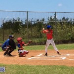 Baseball Bermuda, June 17 2017 (1)