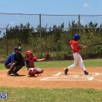 Baseball Bermuda, June 17 2017 (2)
