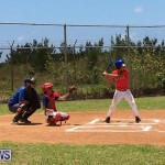 Baseball Bermuda, June 17 2017 (4)