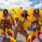Bermuda Heroes Weekend Parade Of Bands BHW, June 19 2017_3024