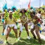 Bermuda Heroes Weekend Parade Of Bands BHW, June 19 2017_3075