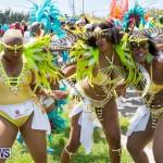 Bermuda Heroes Weekend Parade Of Bands BHW, June 19 2017_3077