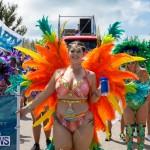 Bermuda Heroes Weekend Parade Of Bands BHW, June 19 2017_3102
