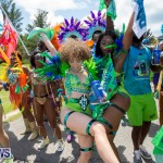 Bermuda Heroes Weekend Parade Of Bands BHW, June 19 2017_3139