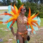 Bermuda Heroes Weekend Parade Of Bands BHW, June 19 2017_3157