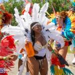 Bermuda Heroes Weekend Parade Of Bands BHW, June 19 2017_3324