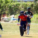Cricket Bermuda June 7 2017 (11)