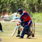 Cricket Bermuda June 7 2017 (12)