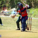 Cricket Bermuda June 7 2017 (13)