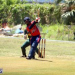 Cricket Bermuda June 7 2017 (14)