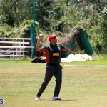 Cricket Bermuda June 7 2017 (16)