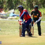 Cricket Bermuda June 7 2017 (4)