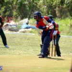 Cricket Bermuda June 7 2017 (5)