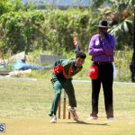 Cricket Bermuda June 7 2017 (6)
