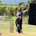 Cricket Bermuda June 7 2017 (7)