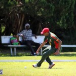 Cricket Bermuda June 7 2017 (8)