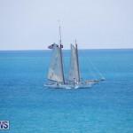 Tall Ships Bermuda, June 5 2017_3996