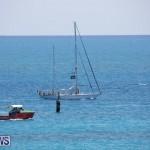 Tall Ships Bermuda, June 5 2017_4007