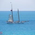Tall Ships Bermuda, June 5 2017_4097