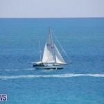 Tall Ships Bermuda, June 5 2017_4203