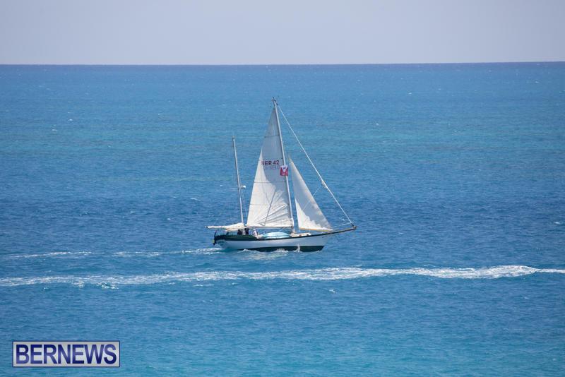 Tall-Ships-Bermuda-June-5-2017_4203